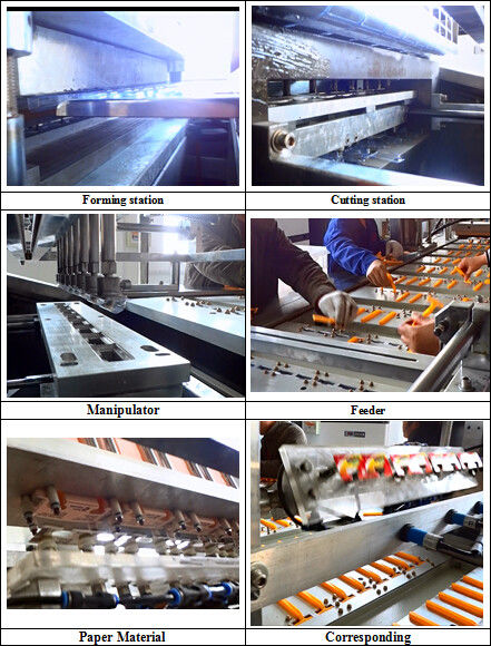 Stainless Steel Automatic High Speed Blister Packing Machine For Daily Necessities